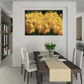 Pole tulipanów - obraz nowoczesny kwiaty nr 2205