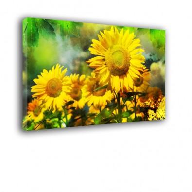 Słoneczniki - obraz nowoczesny kwiaty nr 2213