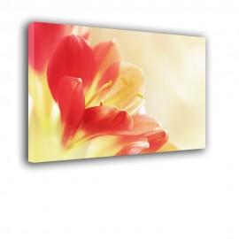 Duże lilie - obraz nowoczesny kwiaty nr 2269