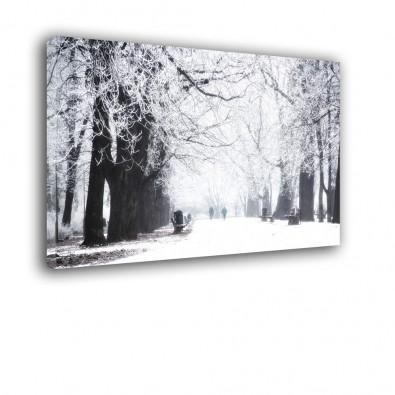 Park zimą - obraz nowoczesny nr 2278