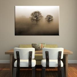 Mgła na polu - obraz na ścianę nr 2284