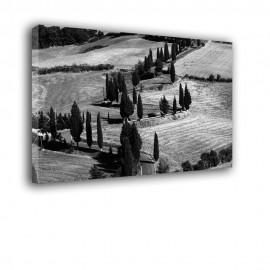 Toskania - obraz nowoczesny krajobraz nr 2027