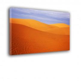 Pomarańczowa pustynia - obraz na płótnie nr 2334