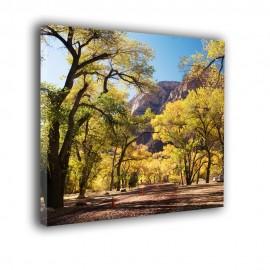 Krajobraz wiejskiej drogi w górach - obraz na płótnie nr 2343