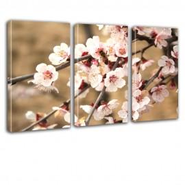 Kwiaty jabłonie - obraz na płótnie - tryptyk nr 2628