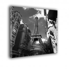 Paryż czarno biały  - obraz na ścianę nr 2354