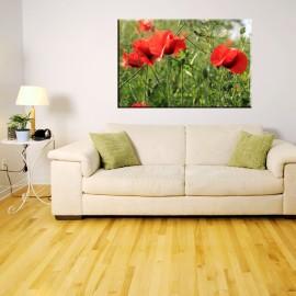 Czerwone maki na zielonej łące - obraz na płótnie nr 2379