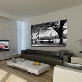 Czarno biały Central Park - obraz na płótnie nr 2381