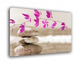 Kamienie gałązka - obraz na płótnie nr 2391