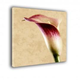 Kalie retro - nowoczesny obraz kwiaty nr 2432