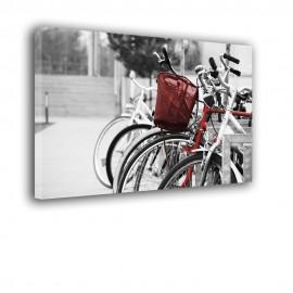 Rower z koszyczkiem - obraz na płótnie nr 2445