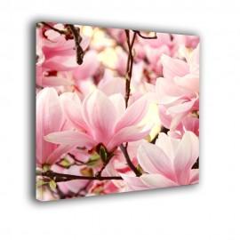 Różowe magnolie - obraz nowoczesny kwiaty nr 2450