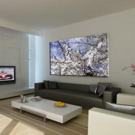 Wiosenne jabłonie - obraz nowoczesny kwiaty nr 2462
