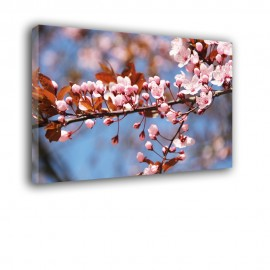 Małe kwiaty - obraz na płótnie nr 2464