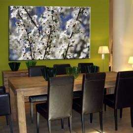 Kwiaty jabłoni na gałązce - obraz na ścianę nr 2466