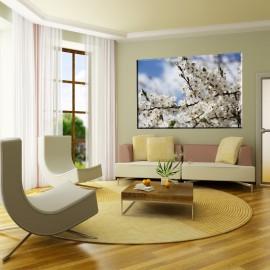 Białe kwiatostany - obraz na płótnie nr 2469