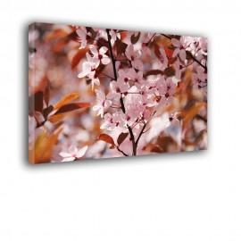 Różowe kwiatuszki - obraz na ścianę nr 2471