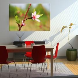 Kwiatek na zielonym tle - obraz na płótnie nr 2495
