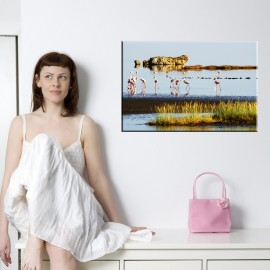 Flamingi - obraz nowoczesny zwierzęta nr 2058