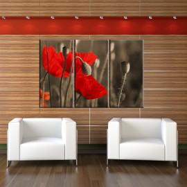 Maki tryptyk - nowoczesny obraz na ścianę nr 2615