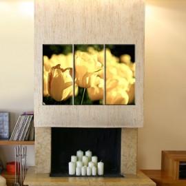 Żółte tulipany - obraz nowoczesny kwiaty nr 2616