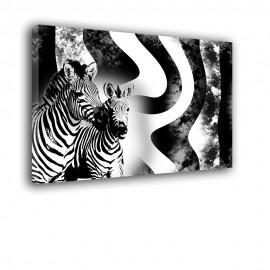 Zebra - obraz na ścianę nr 2152