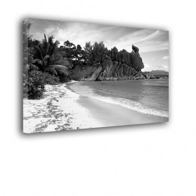 Szare tropiki - obraz na ścianę nr 2153