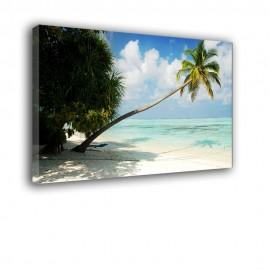 Palma na plaży - obraz na ścianę nr 2174