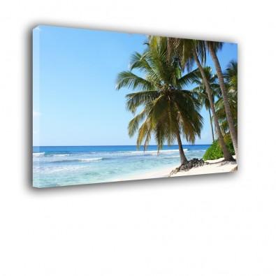 Tropikalna plaża - obraz na ścianę nr 2176