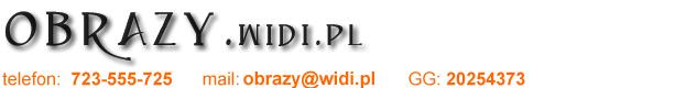 obrazy Widi.pl