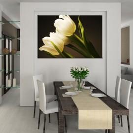 Białe tulipany - obraz nowoczesny kwiaty nr 2202