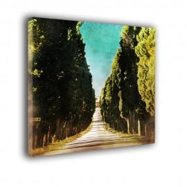 Aleja drzew retro - obraz na płótnie nr 2220