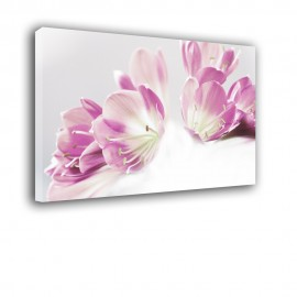 Fioletowe lilie - obraz nowoczesny kwiaty nr 2270