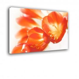 Czerwone lilie - obraz nowoczesny kwiaty nr 2273
