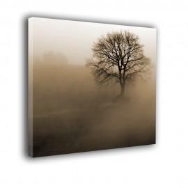 Drzewo we mgle - obraz nowoczesny nr 2285