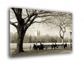 Krajobraz Central Park - obraz na płótnie nr 2289