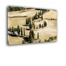 Krajobraz Toskanii - obraz na płótnie nr 2303