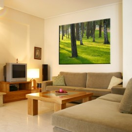Drzewa na trawie - obraz na płótnie nr 2318