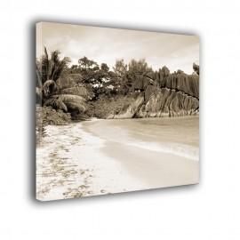 Tropikalna sepia - obraz nowoczesny krajobraz nr 2347