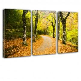 Ścieżka w lesie - obraz nowoczesny nr 2632