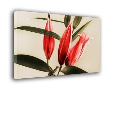 Trzy lilie - obraz nowoczesny kwiaty nr 2406