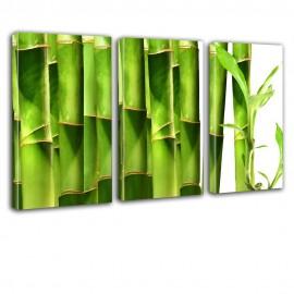 Liście bambusa - obraz na płótnie tryptyk nr 2633