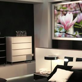 Magnolia na gałązce - obraz nowoczesny kwiaty nr 2451