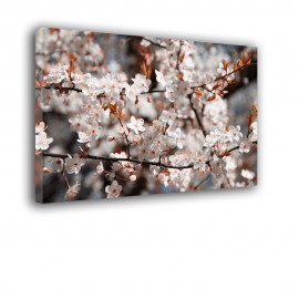 Okwiecone gałęzie - obraz na płótnie nr 2470