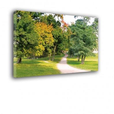 Na drodze do parku - obraz na płótnie nr 2482