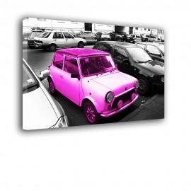 Różowy Mini - obraz na płótnie nr 2484