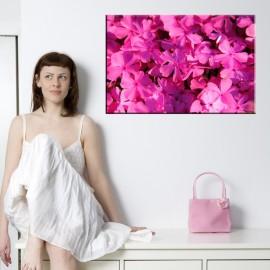 Floksy - obraz nowoczesny kwiaty nr 2524