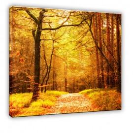 Jesienna droga w lesie - obraz nowoczesny nr 10016