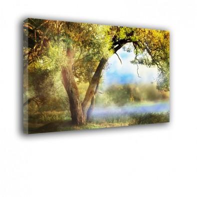 Angielski ogród - obraz nowoczesny krajobraz nr 2223