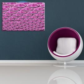 Kółka na sobie - obraz różowy nr 2016